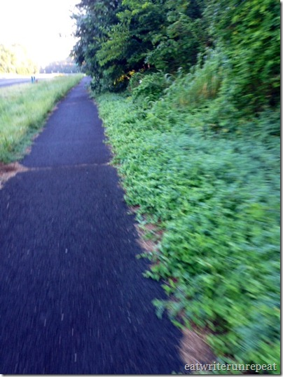 three mile run-2