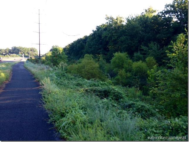 three mile run-3