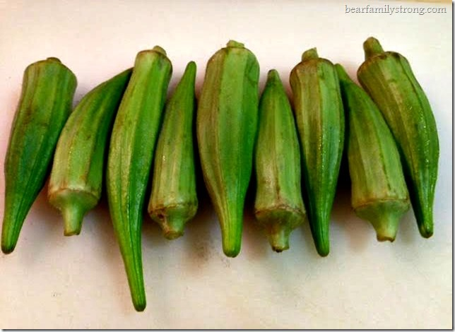 bearfamilystrong.com | indian spiced okra